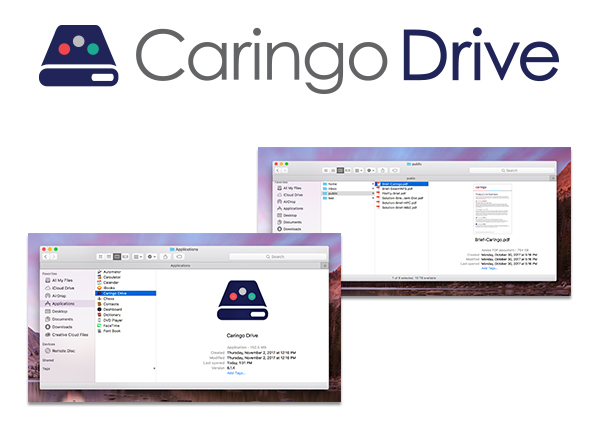 Caringo Drive